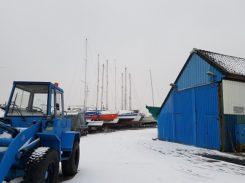 Schoteroog-in-de-sneeuw